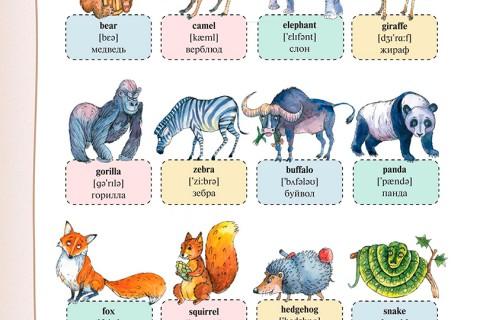 Английский язык для самых маленьких: первые 1000 слов (рис. 3)