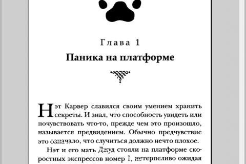 Приключения мальчика - волчонка. Серебряная пуля (рис. 3)