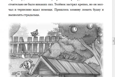 Наталя Бельцова. Приключения Щепки и другие истории (рис 5)
