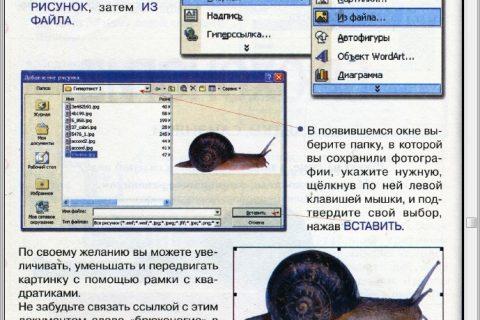 Информатика для начинающих и учащихся начальных классов 2 ступень (рис. 3)