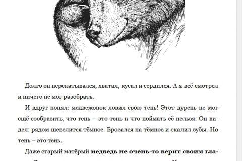 Лесные шорохи. С вопросами и ответами для почемучек (рис. 2)
