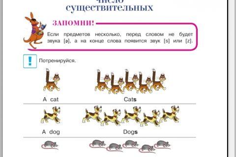 Английский язык для детей 5-6 лет (часть 2, страница 1)
