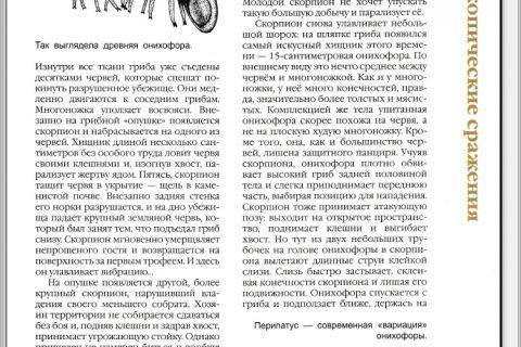 Руслан Габдуллин. Доисторическая жизнь. Зарождение жизни (страница 4)