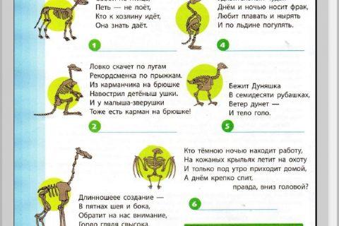 Занимательная книга. В мире природы (страница 1)