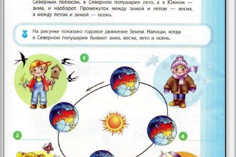 Занимательная книга. В мире природы (страница 4)