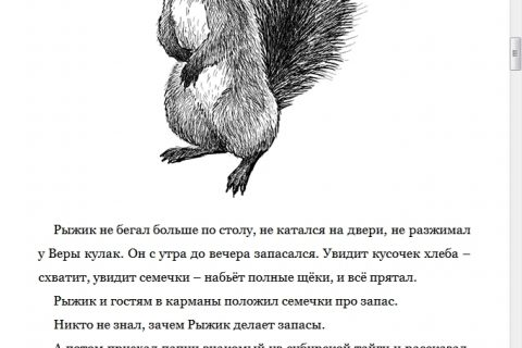 Геннадий Снегирев. Умный дикобраз. С вопросами и ответами для почемучек (страница 2)
