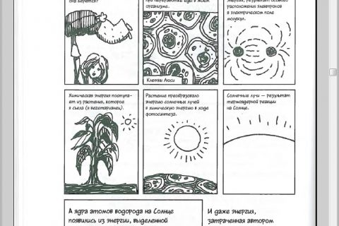 Ларри Гоник, Арт Хаффман. Физика. Естественная наука в комиксах (страница 2)