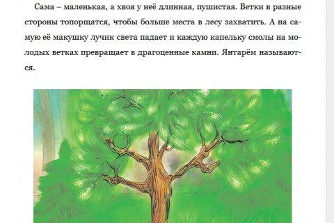 Сказки для тех кто, верит в Фей (страница 2)