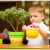 цветы в детской комнате главная