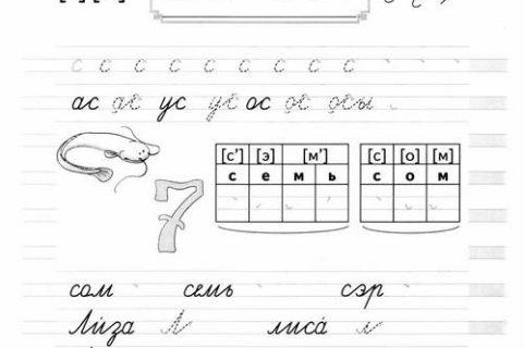 Тетрадь по письму для 1 класса 28