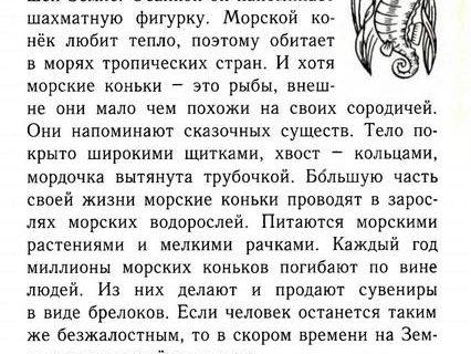 Тетрадь по русскому языку для творческих работ 2 класс 23