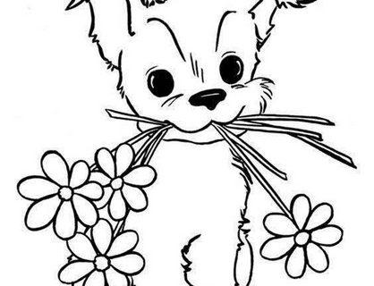 Картинки - раскраски с милыми животными 1