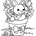 Картинки - раскраски с милыми животными 8